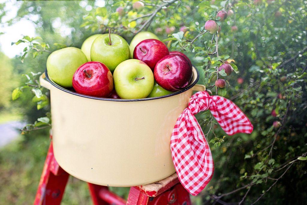 りんごジャムお取り寄せ